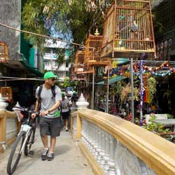 Guided Bangkok Bicycle tours with Follow Me